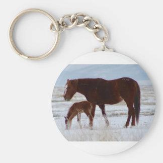 Porte-clés Jument sauvage avec le bébé dans le désert de