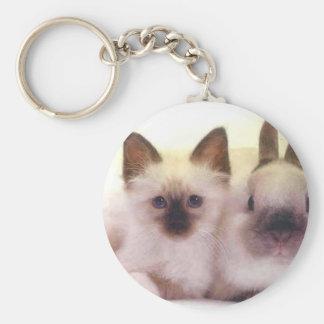 Porte-clés Kitty et produits de lapin