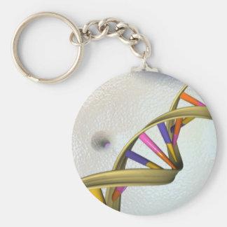Porte-clés La collection d'ADN