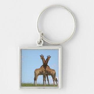 Porte-clés La girafe jumelle le porte - clé