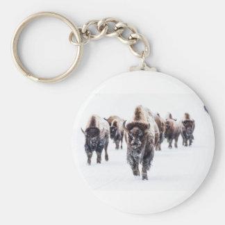 Porte-clés La neige a couvert le bison, le parc national en