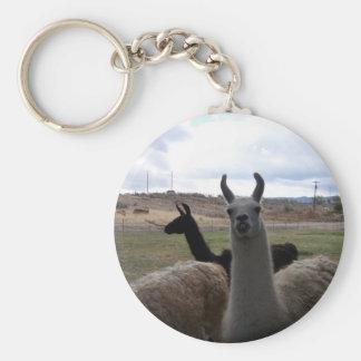Porte-clés Lamas
