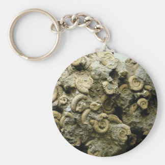 Porte-clés le fossile écosse l'art