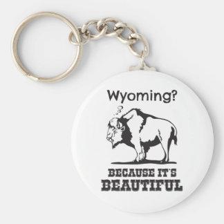 Porte-clés Le Wyoming ? Puisqu'il est beau
