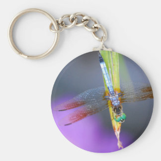 Porte-clés Libellule - porte - clé