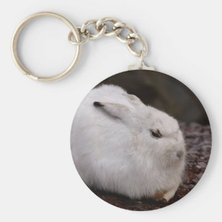 Porte-clés Lièvres animaux de fourrure du monde animal de zoo