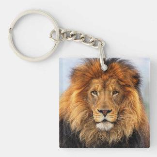 Porte-clés Lion africain 1