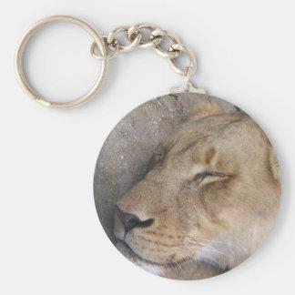 Porte-clés Lionne de sommeil