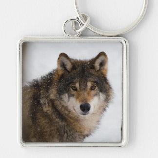 Porte-clés Loup