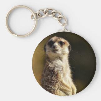 Porte-clés Meerkat