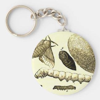 Porte-clés Mite vintage du ver à soie | de l'image |