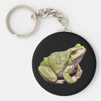 Porte-clés Noir vert mignon de Treefrog de méditation de