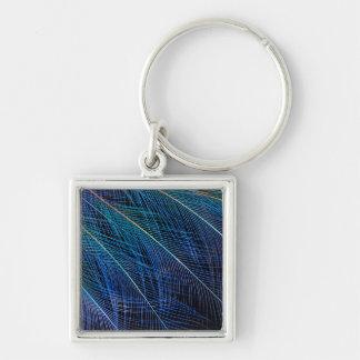 Porte-clés Oiseau bleu d'abrégé sur plume de paradis