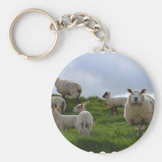 Porte-clés Pâturage des moutons