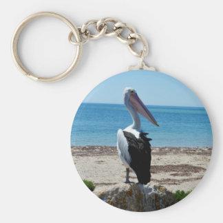 Porte-clés Pélican sur la roche de plage,