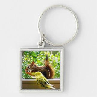 Porte-clés Perruche et écureuil rouge