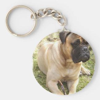 Porte-clés Porte - clé anglais de mastiff