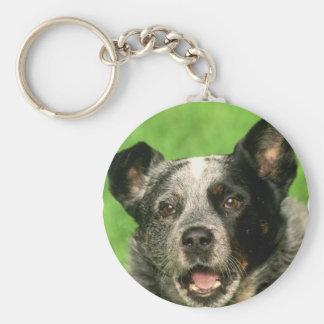 Porte-clés Porte - clé australien de chien de bétail