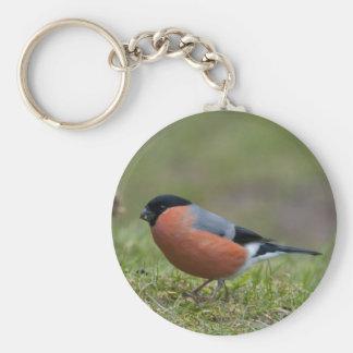 Porte-clés Porte - clé britannique d'oiseau de bouvreuil