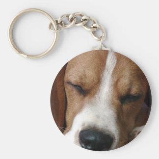 Porte-clés Porte - clé de beagle de sommeil