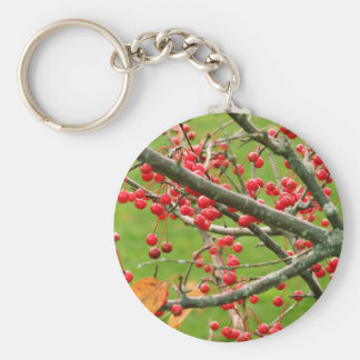 Porte-clés Porte - clé de Bush de baie