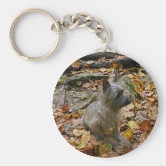 Porte-clés Porte - clé de cairn d'automne