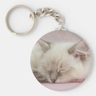 Porte-clés porte - clé de chaton de ragdoll