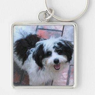 Porte-clés Porte - clé de chien, briques K-ECO