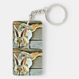 Porte-clés Porte - clé de coutume de lapin de sommeil