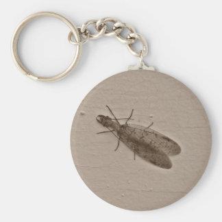 Porte-clés porte - clé de dobsonfly