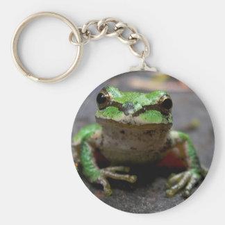 Porte-clés Porte - clé de grenouille d'arbre