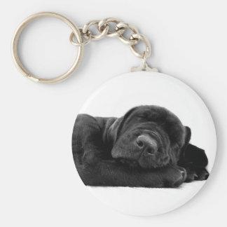 Porte-clés Porte - clé de laboratoire de sommeil