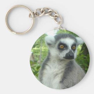 Porte-clés Porte - clé de lémur du Madagascar