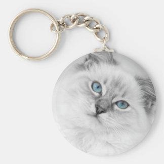 Porte-clés porte - clé de ragdoll