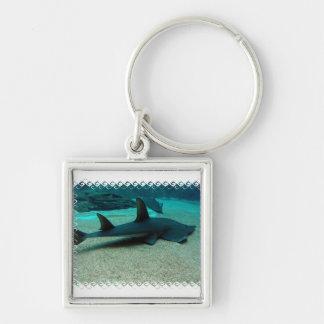 Porte-clés Porte - clé de requin de sable