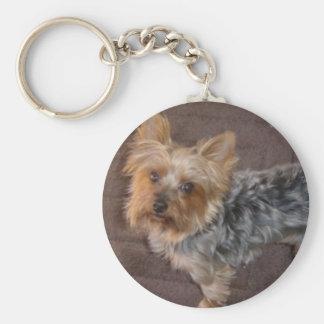 Porte-clés Porte - clé de Yorkshire Terrier