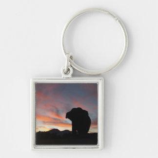 Porte-clés Porte - clé d'éléphant de coucher du soleil