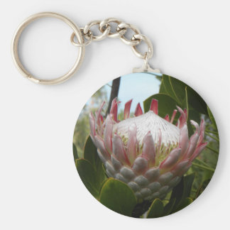 Porte-clés Porte - clé d'Hawaï de fleur de Protea
