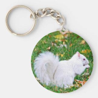Porte-clés Porte - clé - écureuil albinos