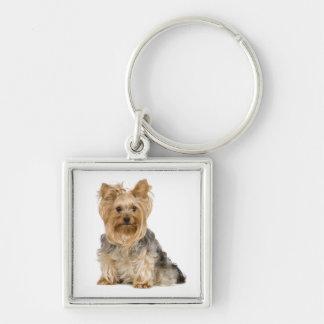 Porte-clés Porte - clé mignon de chiot de Yorkshire Terrier