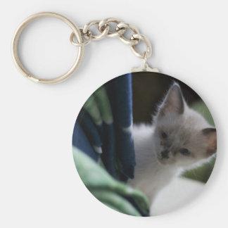 Porte-clés Porte - clé semi-transparent de chaton