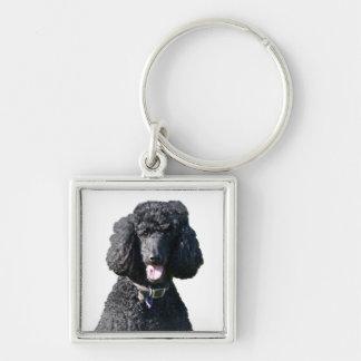 Porte-clés Portrait de photo de noir de chien de caniche