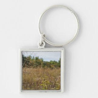 Porte-clés Prairie envahie