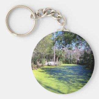 Porte-clés Région sauvage de rivière de la Floride