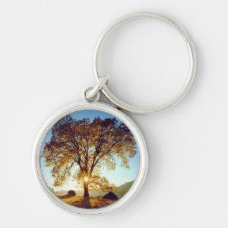 Porte-clés Réserve forestière noire des chênes | Cleveland,