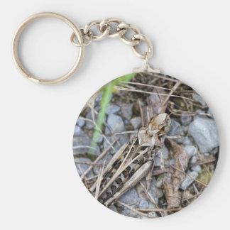 Porte-clés Sauterelle camouflée