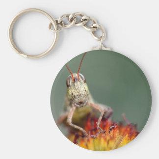Porte-clés Sauterelle sur la fleur rouge et jaune