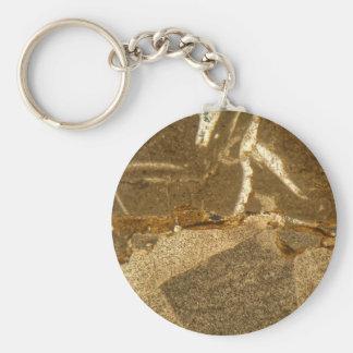 Porte-clés Section mince de carbonate triassique sous le