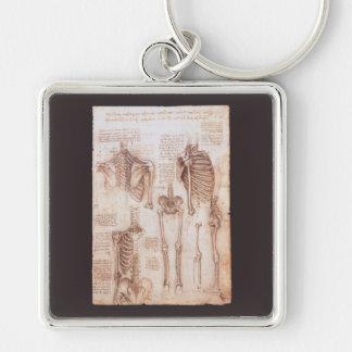 Porte-clés Squelettes humains d'anatomie par Leonardo da
