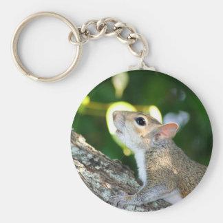 Porte-clés Squirrely ! porte - clé